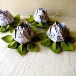 Paper Lotus, Music Sheet and Green,..